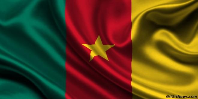 Cameroun : le patriotisme ne saurait distraire la réalité !