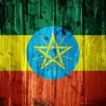 Économie : 8ème réunion de la Planification et du Développement économique pour l'Afrique