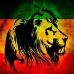Musique : Festival international «Abi-Reggae» au mois d'avril en Côte d'Ivoire